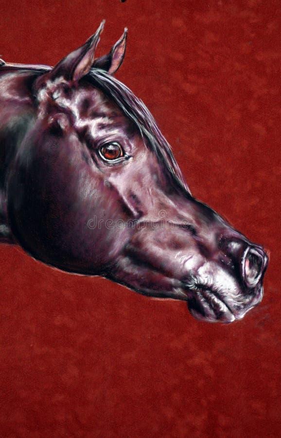 Portrait des arabischen Stallion vektor abbildung