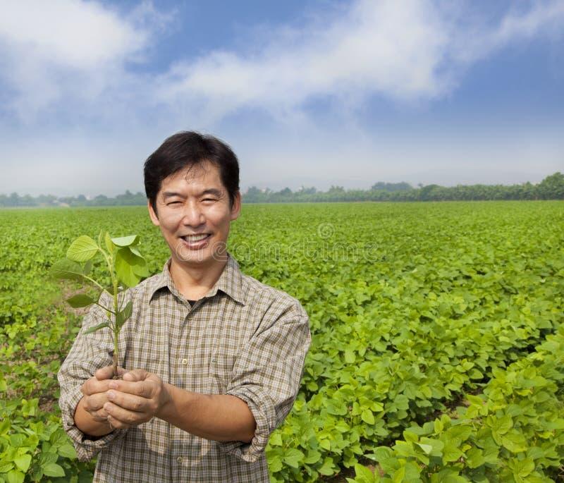 Portrait des asiatischen Landwirts lizenzfreie stockfotos