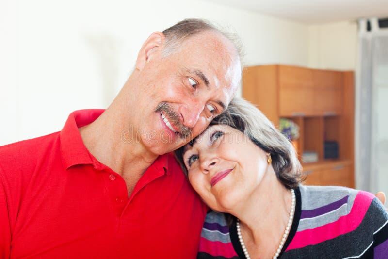Portrait des couples pluss âgé affectueux photo libre de droits
