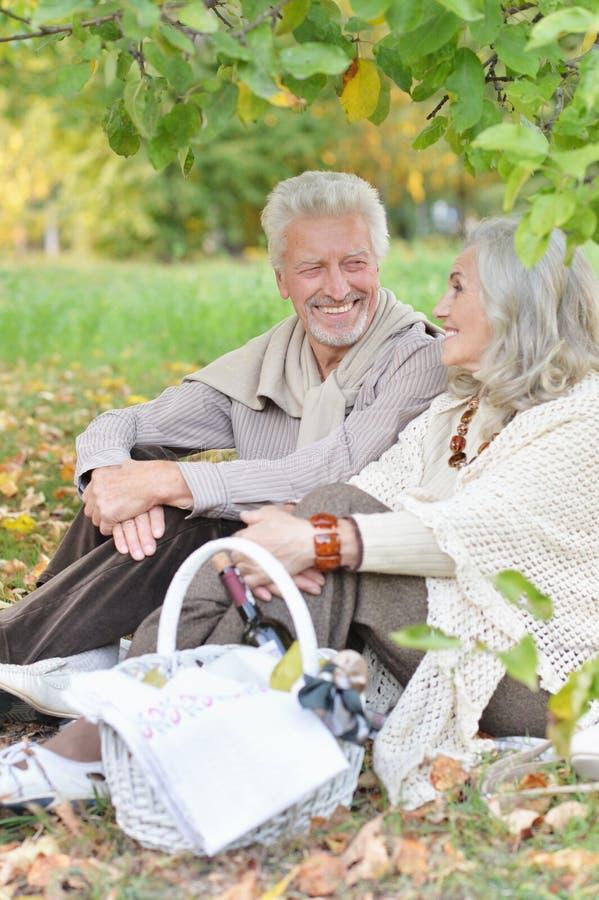 Portrait des couples supérieurs ayant le pique-nique dehors images stock