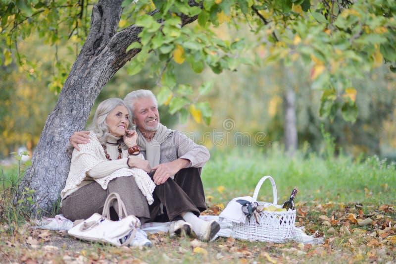 Portrait des couples supérieurs ayant le pique-nique dehors image libre de droits