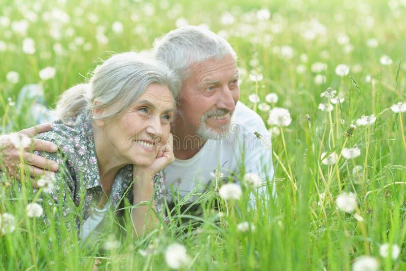 Portrait des couples supérieurs heureux se trouvant sur le pré vert photographie stock