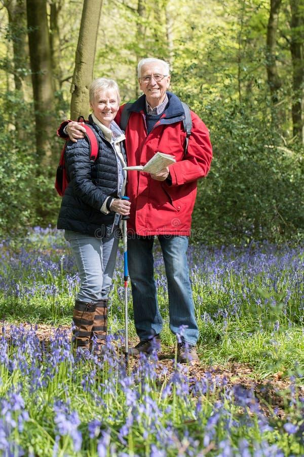 Portrait des couples supérieurs sur la promenade par le bois de jacinthe des bois photo libre de droits