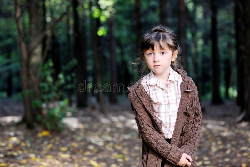 Portrait des entzückenden Kindmädchens im Herbstwald stockfotografie