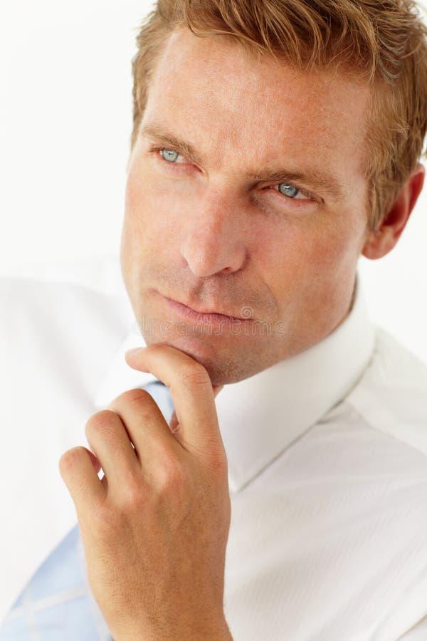 Portrait des Geschäftsmannes lizenzfreies stockbild