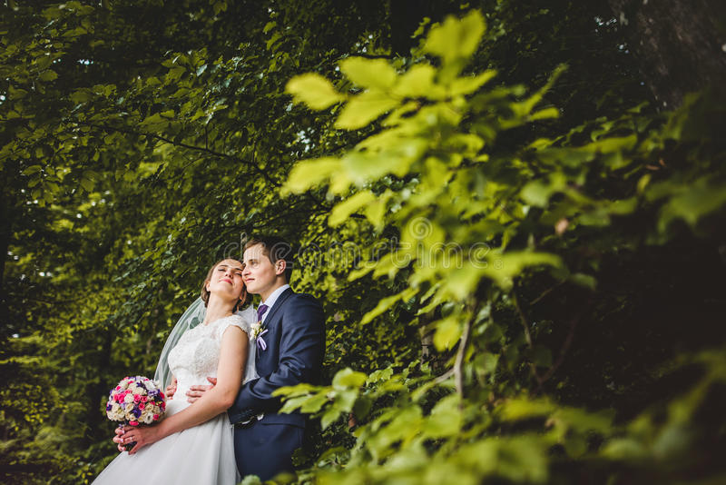 Portrait des jeunes mariés sur la forêt images libres de droits