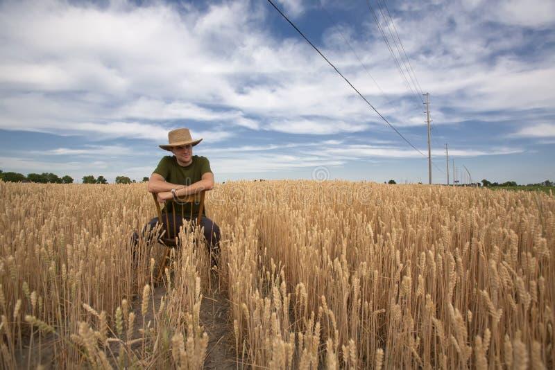 Portrait des Landwirts auf dem Gebiet lizenzfreie stockfotos