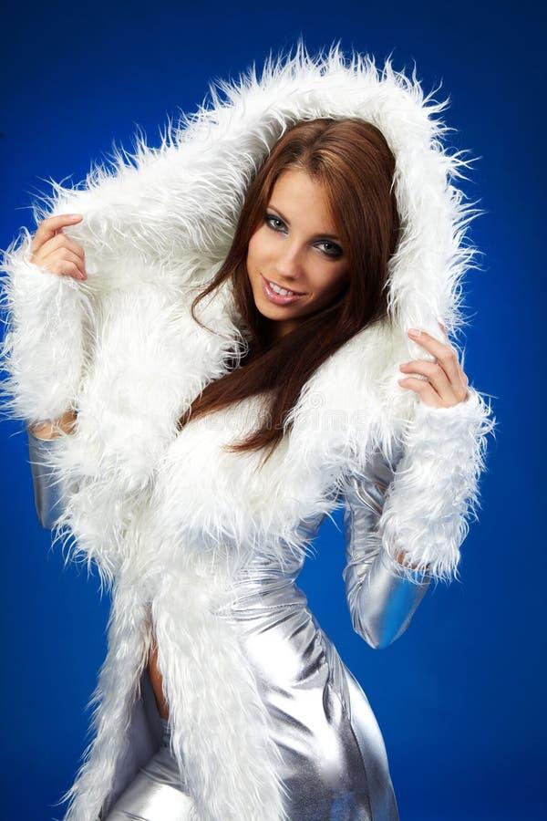 Portrait einer Winterfrau, Fantasieart und weise stockbilder