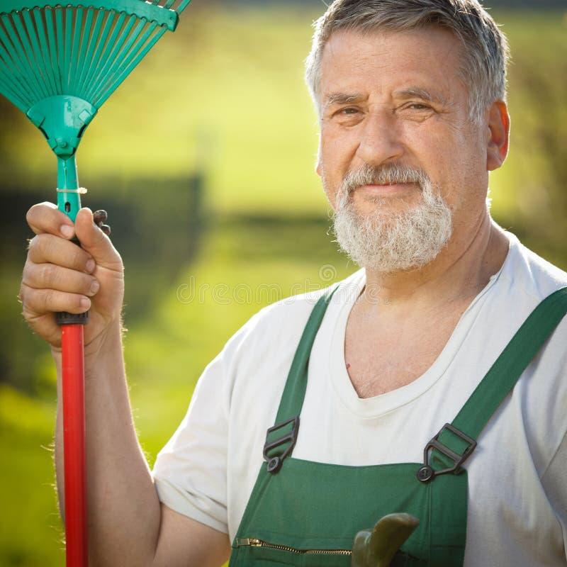 Portrait eines älteren Mannes, der in seinem Garten im Garten arbeitet lizenzfreies stockfoto