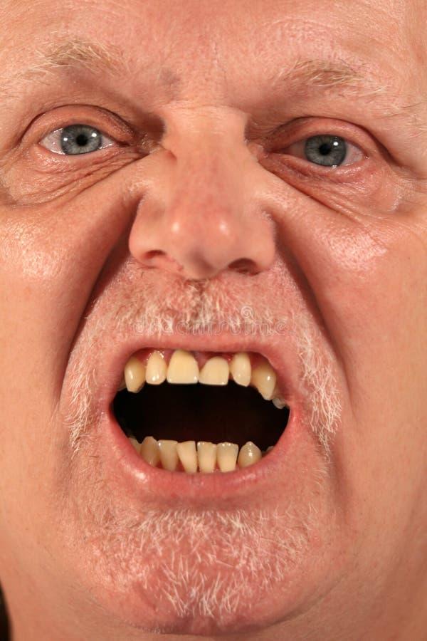 Portrait eines fälligen Herrn lizenzfreie stockfotos