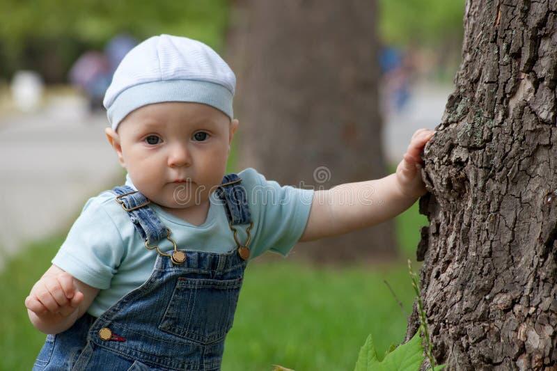 Portrait eines glücklichen kleinen Jungen lizenzfreie stockfotos