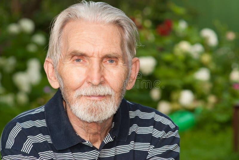 Download Portrait of elderly man stock photo. Image of mature - 12988990