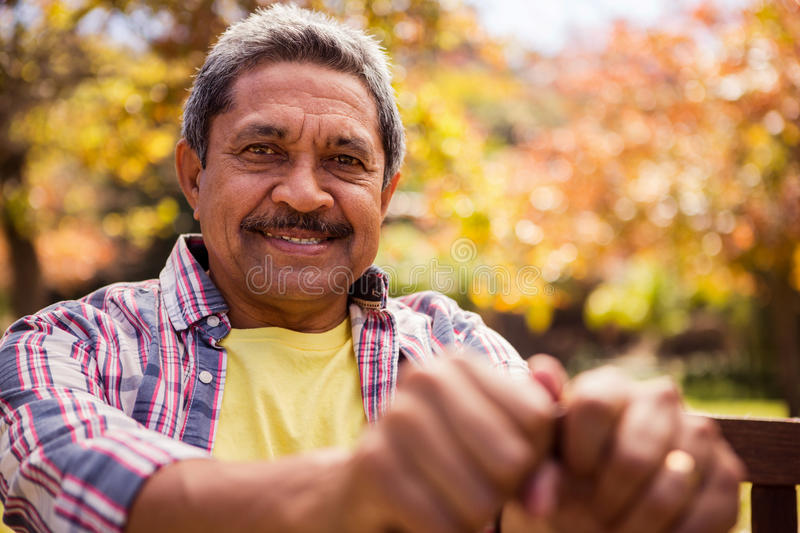Portrait of elderly man sitting on the bench royalty free stock photography