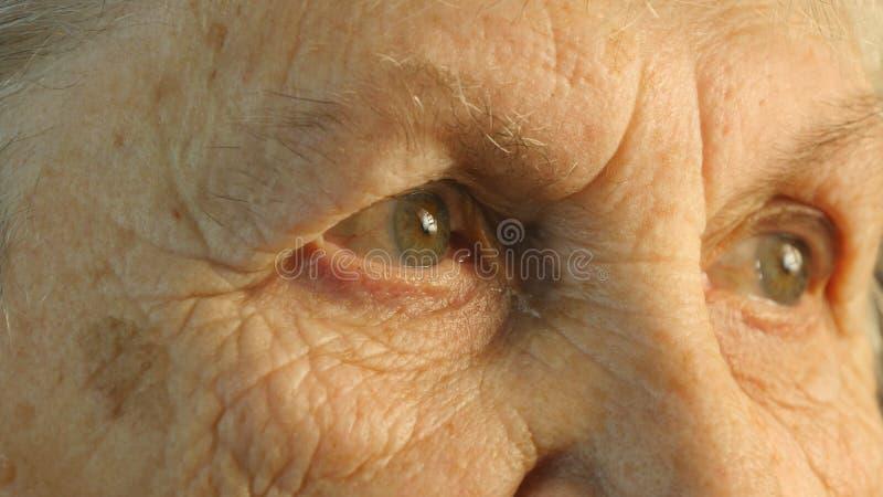 Portrait en gros plan d'un regard fixe du ` s de dame âgée photo stock