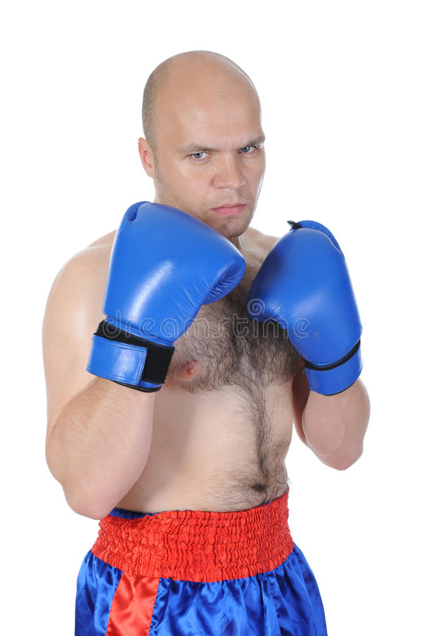 Portrait of an experienced boxer royalty free stock photography