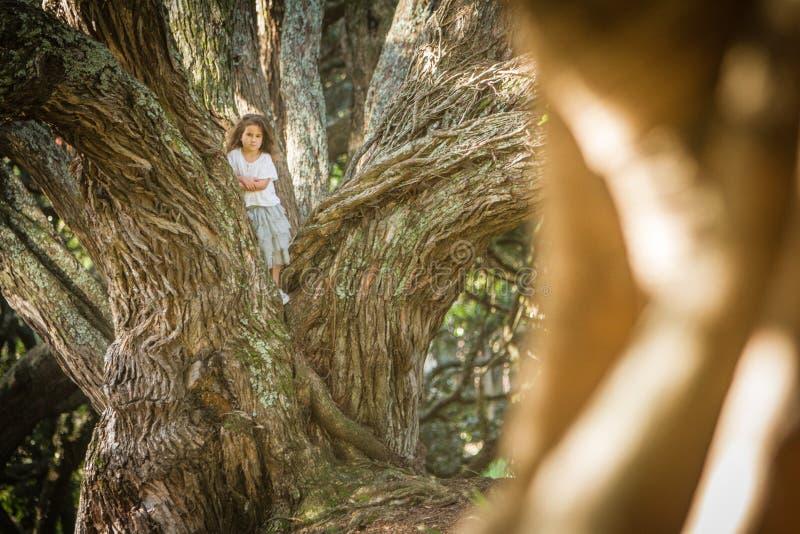 Portrait extérieur de fille d'enfant en bas âge dans la forêt magique, Na extérieur images libres de droits