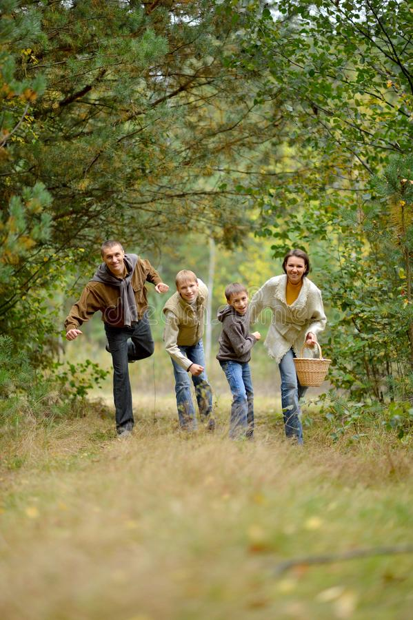 Portrait of family of four in park royalty free stock images