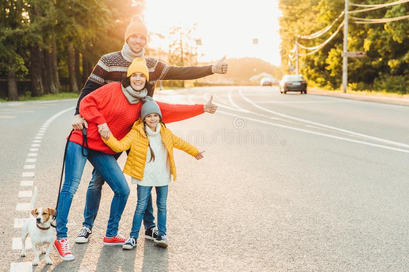 Portrait of family: mother, father and little daughter walk with pet, stand on road, raise thumbs as show ok sign,express approval stock image