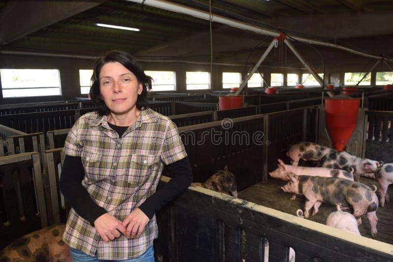 Portrait of a farm woman on a pig farm royalty free stock photos