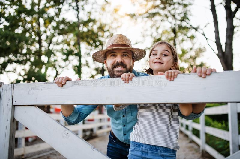 A portrait of father with small daughter outdoors on family farm. royalty free stock photo