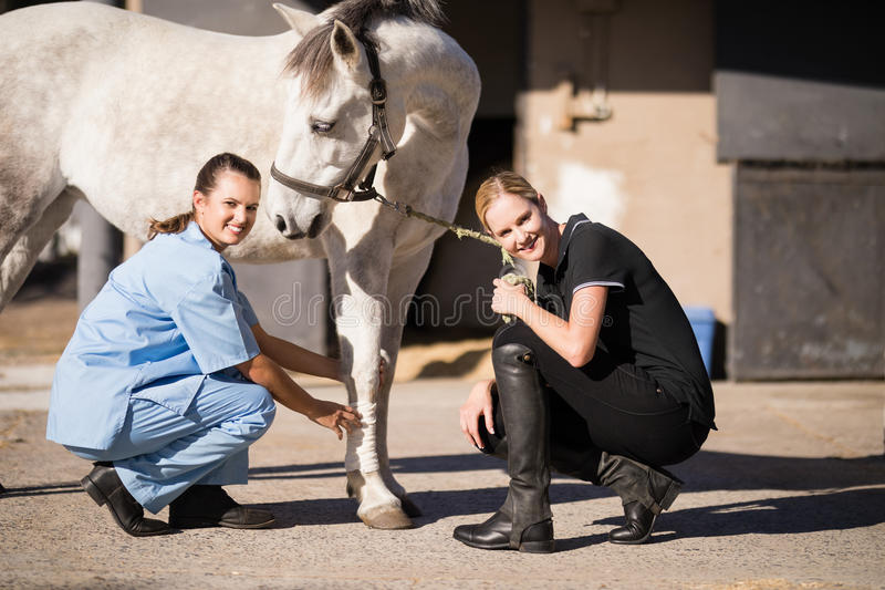 Portrait of female jockey and vet crouching by horse. At barn royalty free stock photography