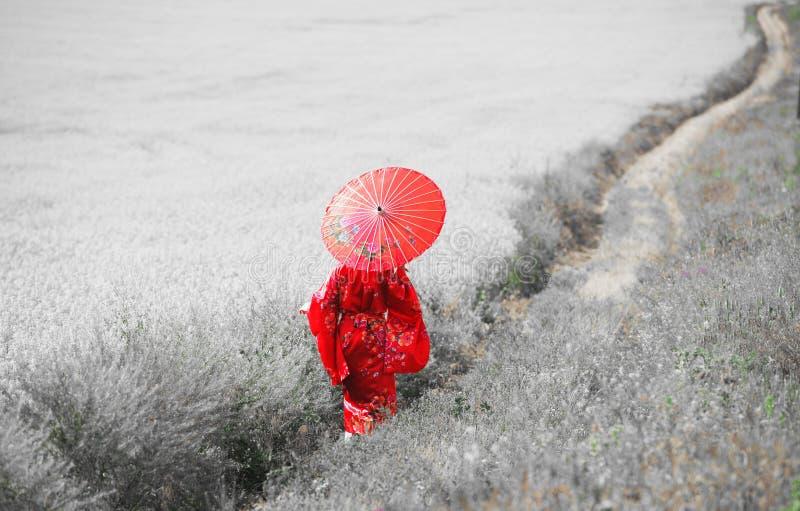 Portrait femelle de style asiatique, couleur d'art photographie stock