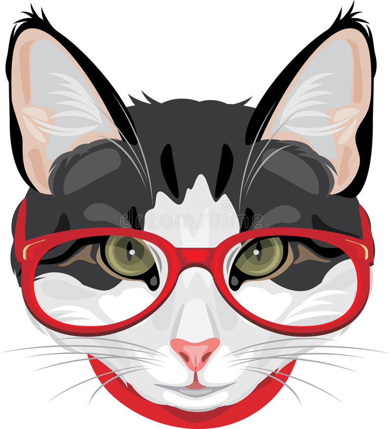 Portrait of a funny cat with red glasses royalty free stock images