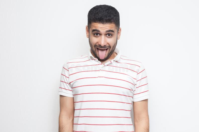 Portrait of funny crazy handsome bearded young man in striped t-shirt standing, tongue out and looking at camera with funny face. Indoor studio shot, isolated royalty free stock photos