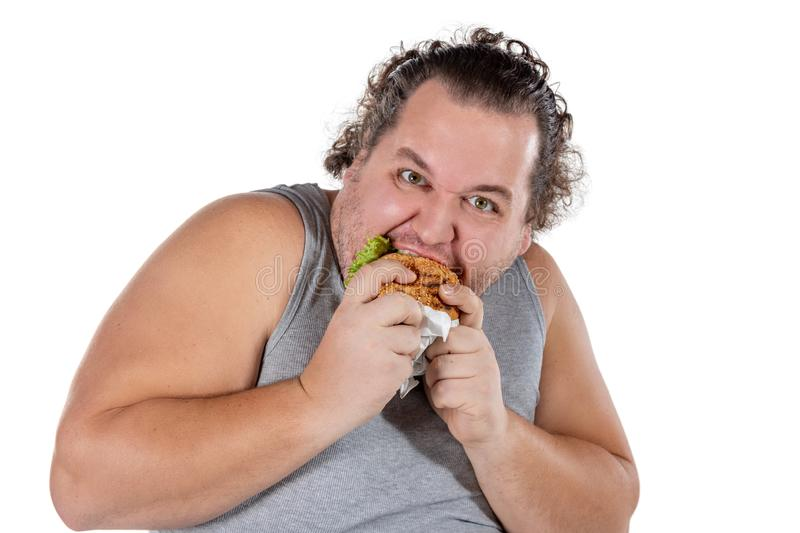 Portrait of funny fat man eating fast food burger isolated on white background royalty free stock images