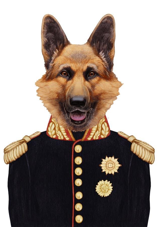 Portrait of German Shepherd in military uniform. vector illustration