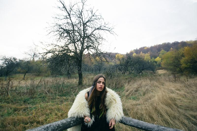 Portrait of a girl in an autumn field stock image