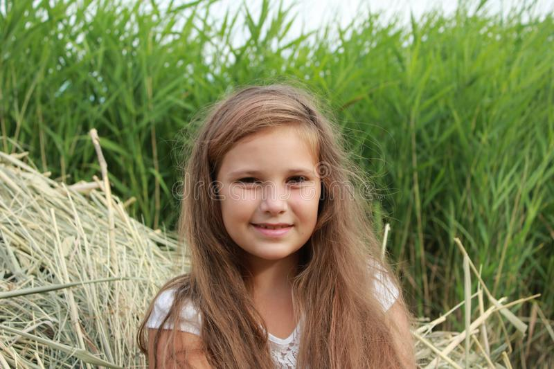 Portrait of a girl with loose hair sitting in the dry grass in nature royalty free stock photography