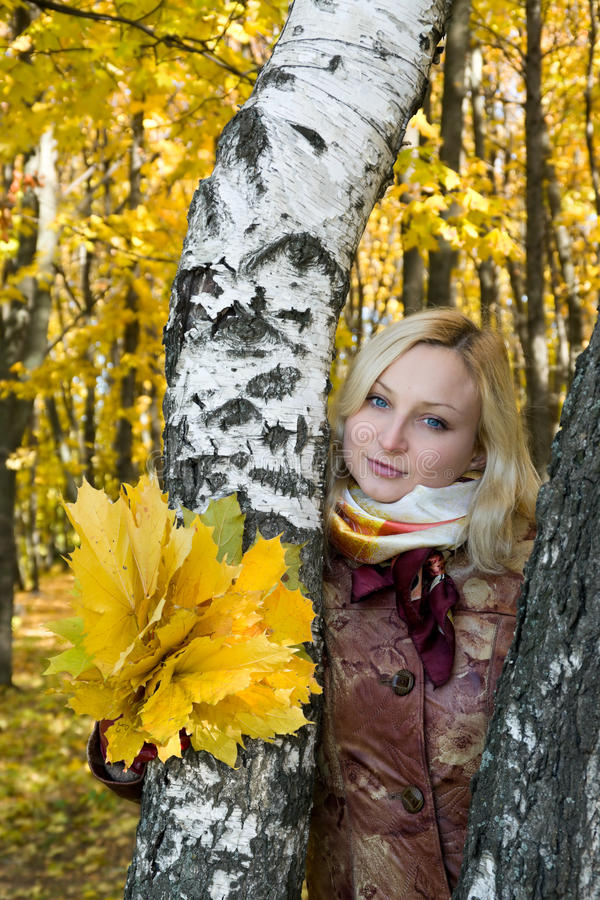 Portrait of a girl with a maple leaf. In autumn park royalty free stock photos