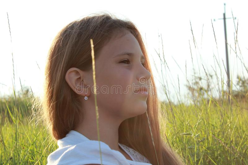 Woman portrait at sunset on the background of nature stock image