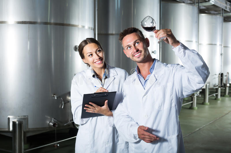 Portrait of glad two experts examining wine stock image