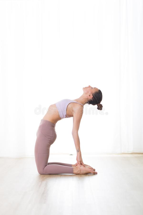 Portrait of gorgeous active sporty young woman practicing yoga in studio. Beautiful girl practice Ustrasana, camel yoga stock photo