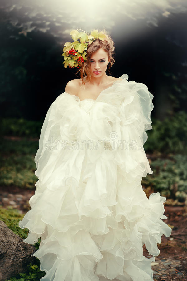 Portrait of a gorgeous bride in a gorgeous dress. royalty free stock photography