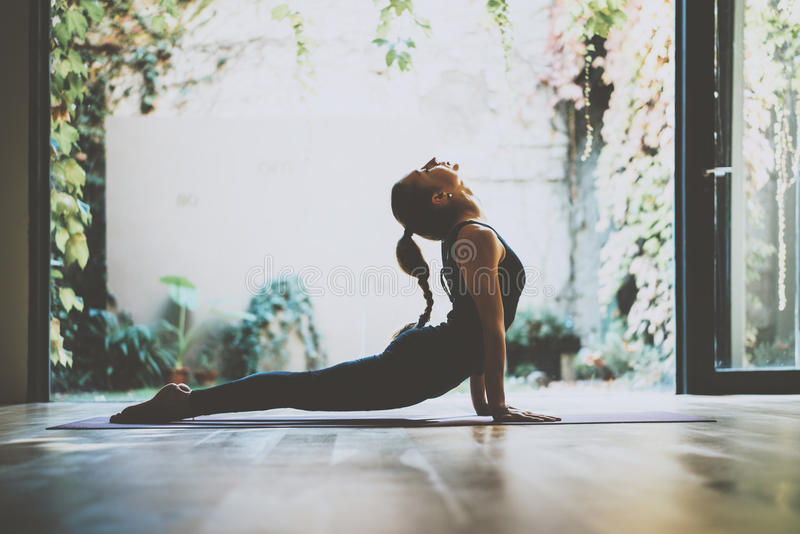 Portrait of gorgeous young woman practicing yoga indoor. Beautiful girl practice cobra asana in class.Calmness and relax royalty free stock image