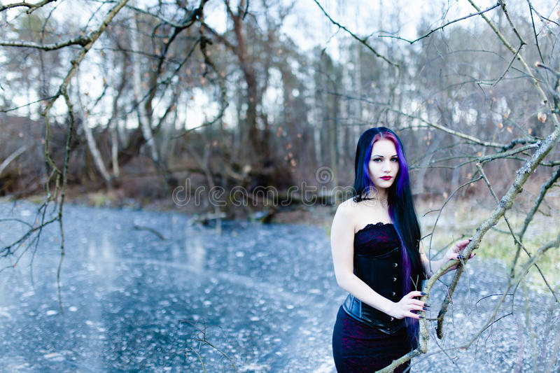 Portrait of the gothic woman on the frozen lake. At sunset royalty free stock image