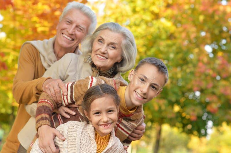 Portrait of grandparents with grandchildren royalty free stock image