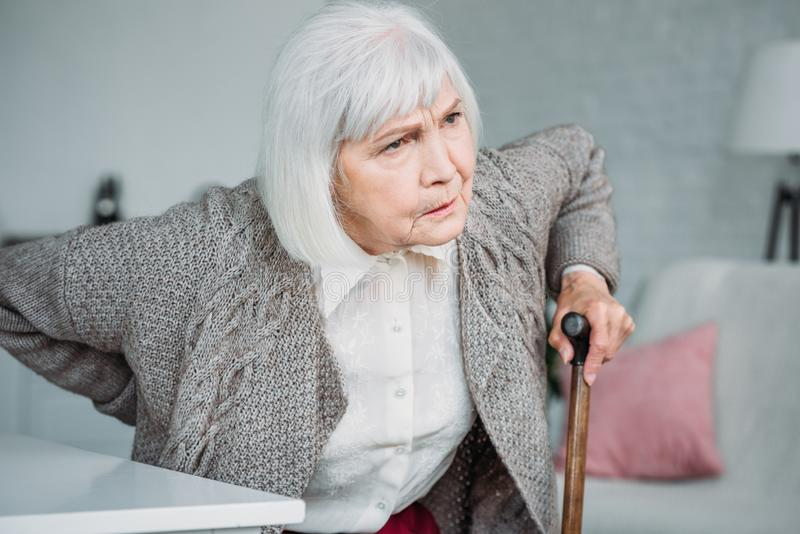 portrait of grey hair lady with back ache and wooden walking stick sitting on chair stock image