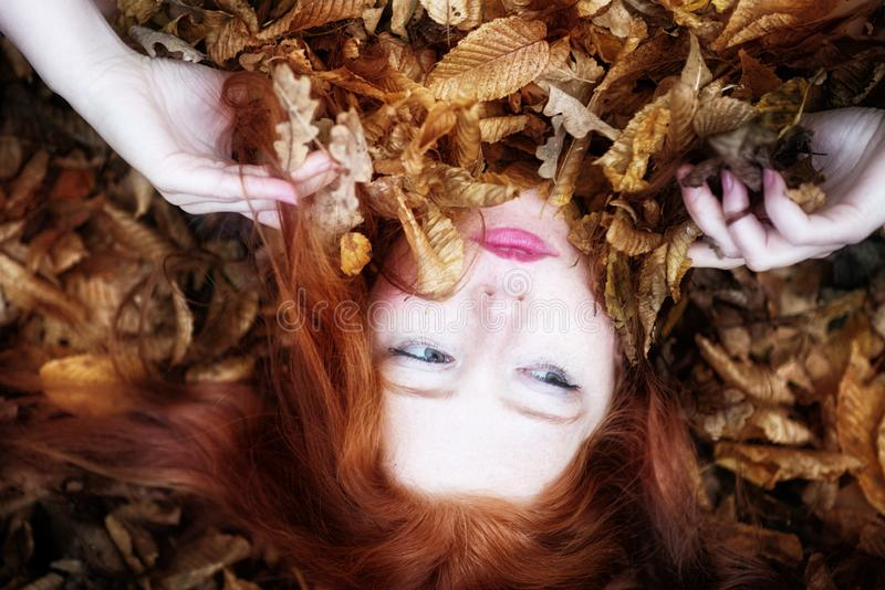 Portrait and hands of a natural young lady, covered with red and orange autumnal leaves. Beautiful woman lying royalty free stock photography