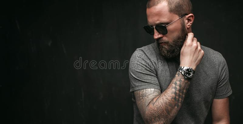 Portrait of a handsome balded man with long well trimmed beard wearing sunglasses and grey shirt looking away to side stock image
