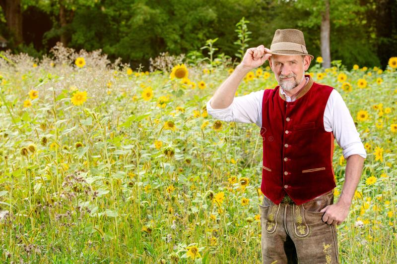 Handsome bavarian man in his 50s standing in a field of sunflowers royalty free stock photography