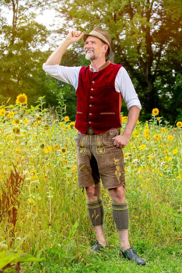 Handsome bavarian man in his 50s standing in a field of sunflowers stock photo