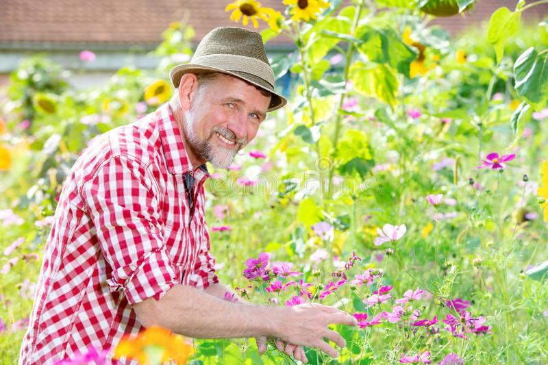 Handsome bavarian man in his 50s standing in the garden royalty free stock images