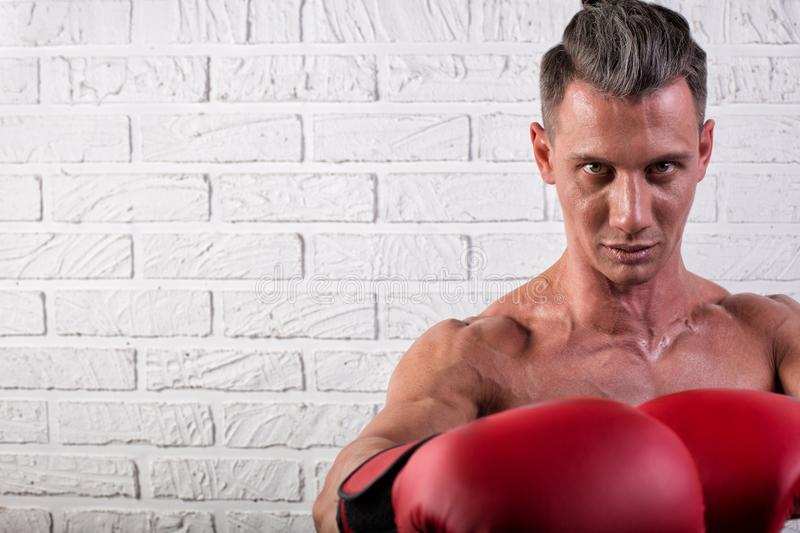 Portrait of handsome boxer man standing on the bric wall and looking at camera with intense gaze. Portrait of handsome boxer man standing on the wall and looking royalty free stock photo