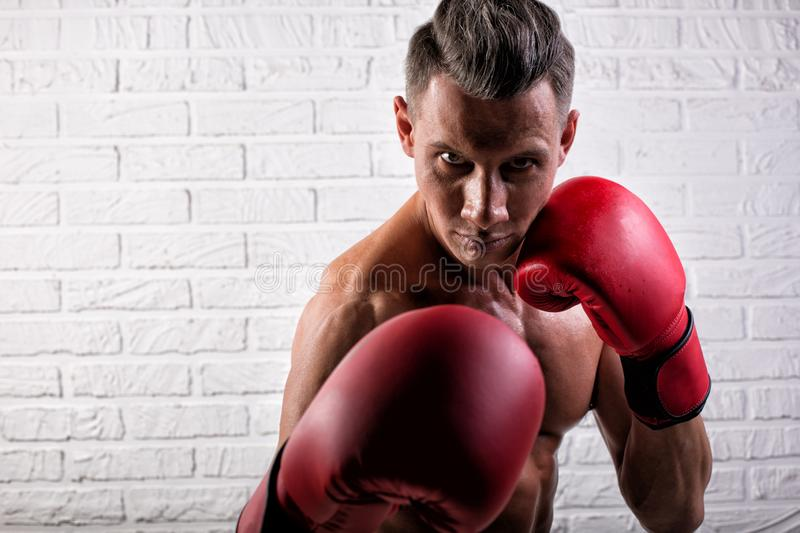 Portrait of handsome boxer man standing on the bric wall and looking at camera with intense gaze. Portrait of handsome boxer man standing on the wall and looking royalty free stock photos
