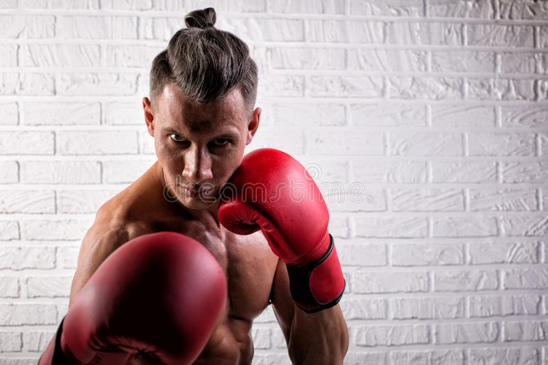 Portrait of handsome boxer man standing on the bric wall and looking at camera with intense gaze. Portrait of handsome boxer man standing on the wall and looking stock photos