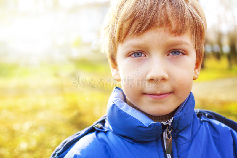 Portrait of a handsome boy royalty free stock images